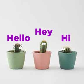 سلام و احوالپرسی به انگلیسی greetings